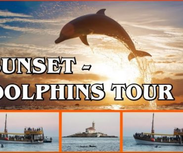 Sunset-dolphins tour